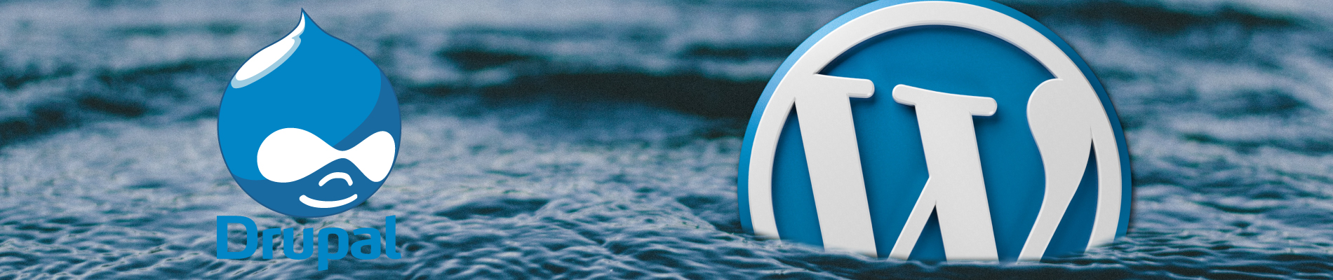 Wordpress e Drupal